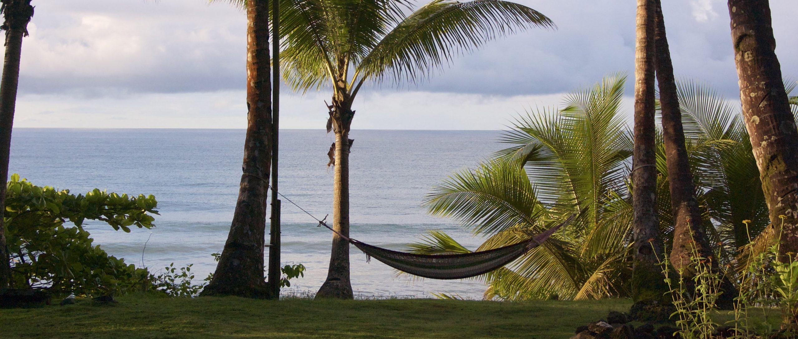 Hangmat tussen palmbomen